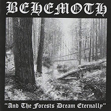 album-and-the-forests-dream-eternally-ep