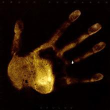 album-devlab
