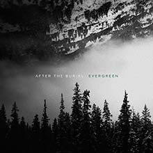 album-evergreen
