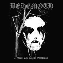 album-from-the-pagan-vastlands