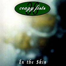 album-in-the-skin