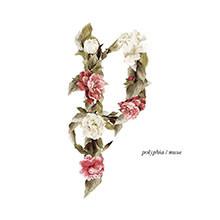 album-muse