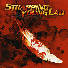 album-strapping-young-lad