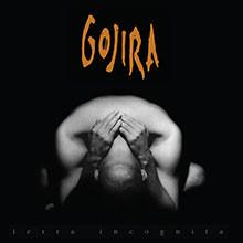 album-terra-incognita