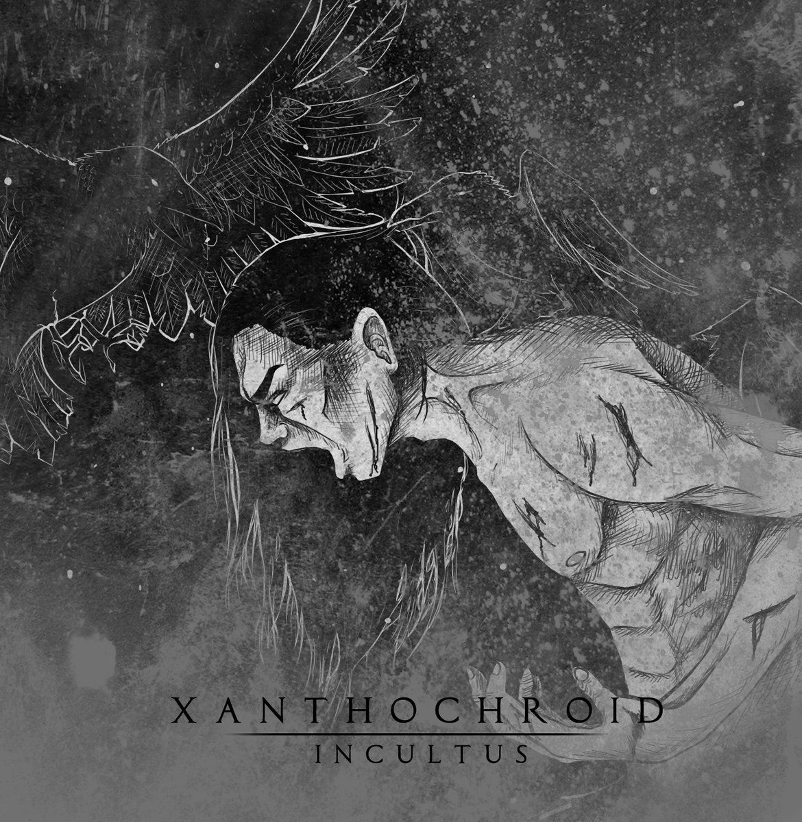 xanthochroid-incultus-ep