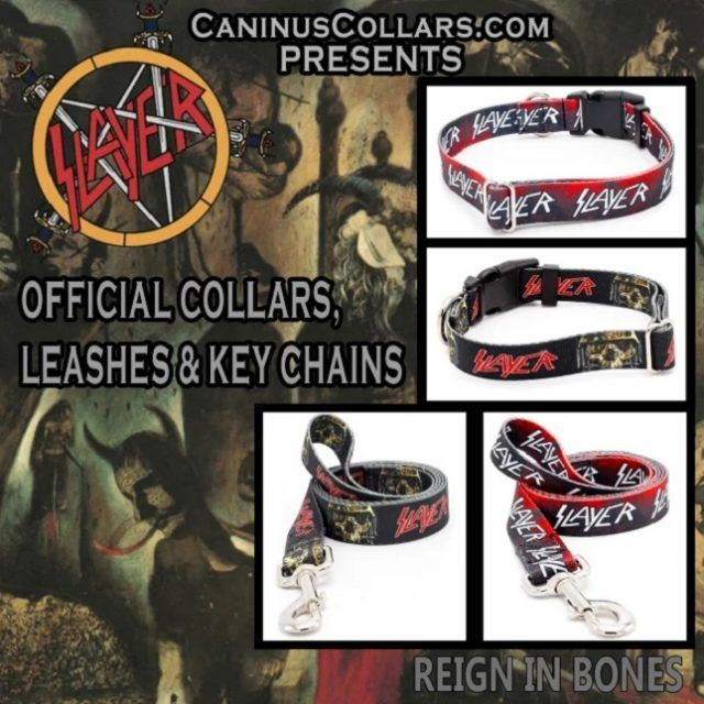 Des colliers pour chiens Slayer, Motörhead et Mötley Crüe sont désormais disponibles