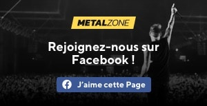 Facebook Metalzone
