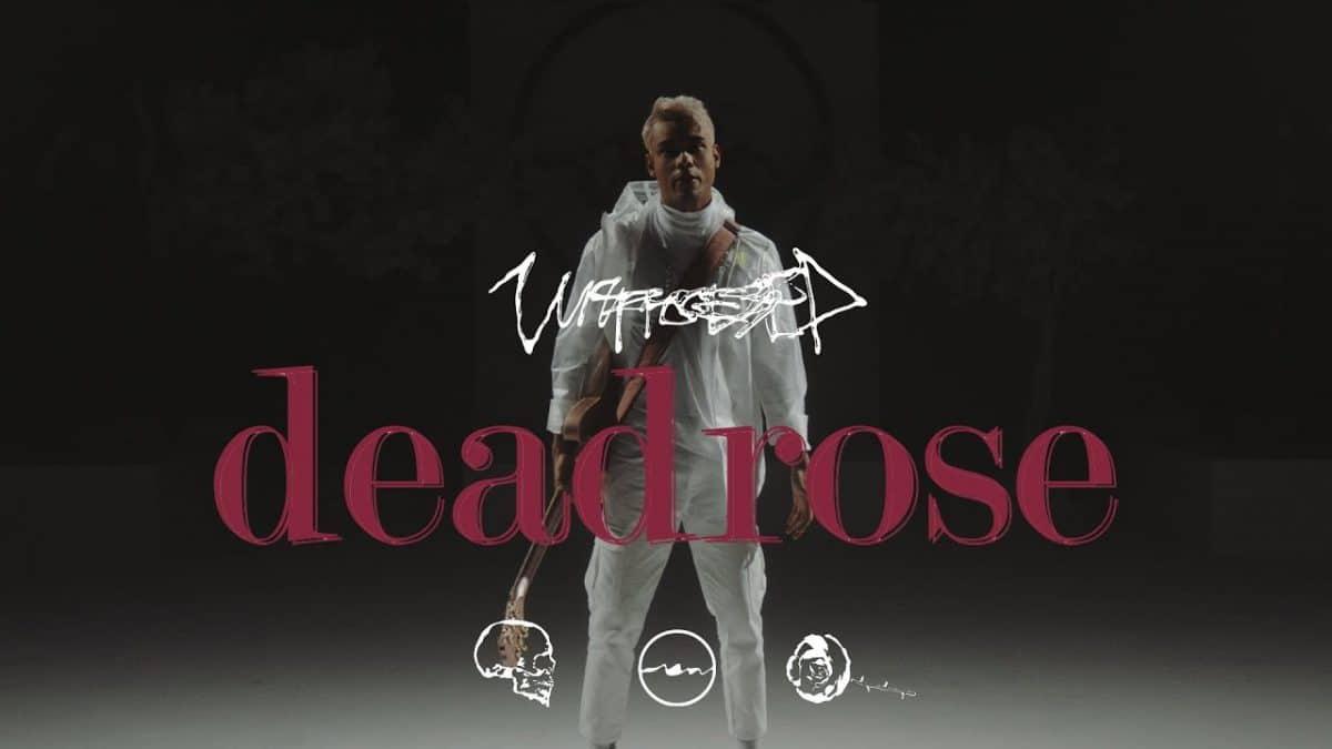 Unprocessed sort une nouvelle chanson, Deadrose